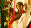 embroidery, radzio, katarzyna, katarzyna radzio, secesja, haft, haft artystyczny, haft komputerowy, haft maszynowy, prezent, gift, ślub, wedding,dekoracja, decoration, ornament, fantazyjne, jednostkowe, unikalne, unic, indywidualne, indyvidual, wyjątkowe, autorskie, secesja, secession, art, artistic, obraz, image, anioł, angel, chmury, raj, paradise, MIŁOŚĆ, LOVE, DANSE, TAŃCZYĆ